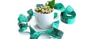 supplemento di estratto di chicco di caffè verde