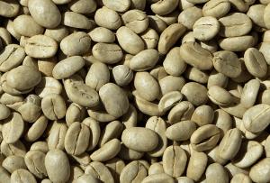 Proprietà del caffè verde (per perdere peso e altro)